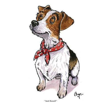 Agripix Jack Russell Card